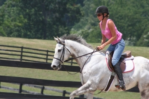 Stomach Soother helped this horse
